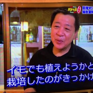 OH!バンデス で「新ブランド 仙台金時」として放送!